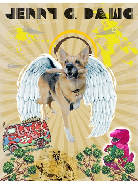Tripawds Angel Jerry G Dawg