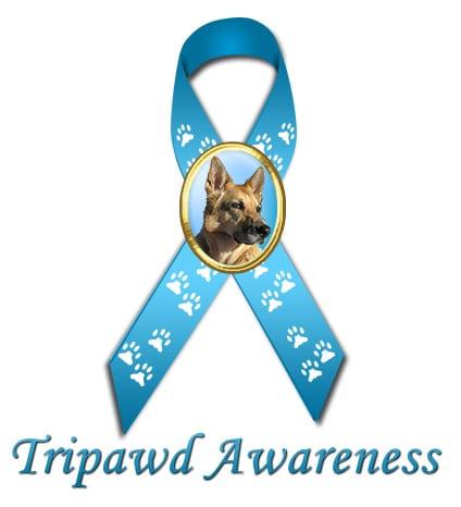 tripawd awareness ribbon for three legged dog websites